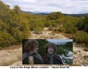 LotR Takaro Ref  300x234 Новозеландец обнаружил забытое место съемки ВК