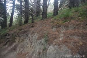 HobbitLedge 300x200 Новая Зеландия, часть 3: Веллингтон