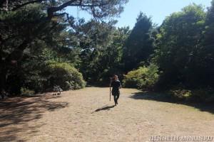 Isengard4 300x200 Новая Зеландия, часть 3: Веллингтон