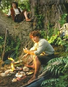 fotr frodo sam tree 232x300 Новая Зеландия, часть 3: Веллингтон