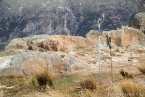 IMG 0960 300x200 Новая Зеландия, часть 4: гора Сандэй (Эдорас)