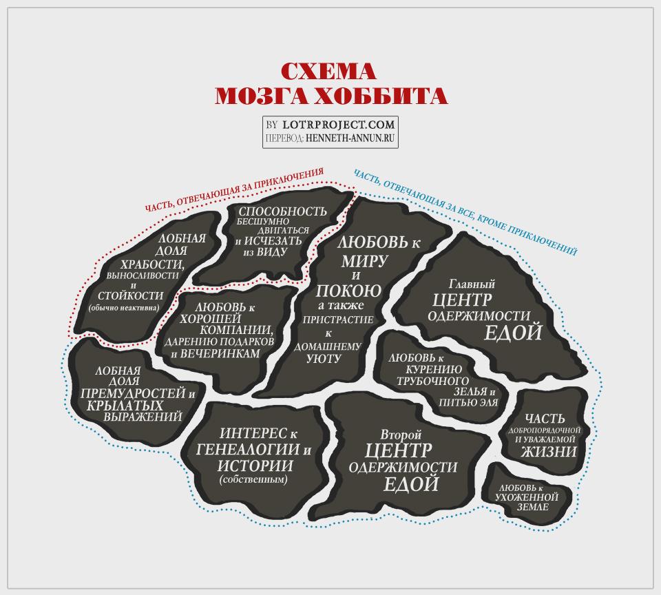 hobbitbrain ru LOTRproject: Схема мозга хоббита