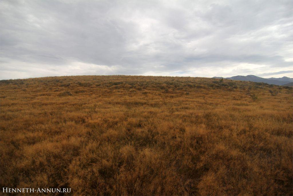 Twizel Rohirrim1 1024x683 Новая Зеландия, часть 5: Твайзел (Пеленнорские поля)